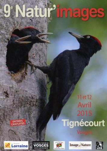 tignecourt 2015.jpg